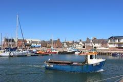 La piccola barca che lascia il porto di Arbroath, Arbroath, Angus, Scozia con parecchi altri piccole barche e yacht ha attraccato Immagine Stock Libera da Diritti