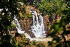 La piccola cascata nel Sudamerica ha incorniciato fra il ramo di albero e le foglie immagine stock libera da diritti