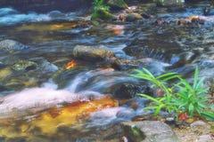 La piccola cascata, scorre l'acqua corrente sopra la roccia fotografia stock