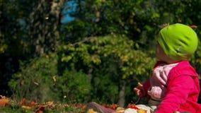 La piccola neonata si siede immobile su erba e gli sguardi alle foglie cadenti in parco il giorno in anticipo luminoso e soleggia archivi video
