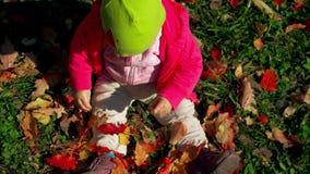 La piccola neonata si siede immobile su erba e gli sguardi alle foglie cadenti in parco il giorno in anticipo luminoso e soleggia video d archivio