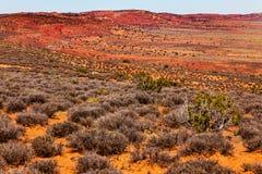 La piedra arenisca roja amarillo-naranja pintada del desierto arquea el parque nacional Moab Utah Foto de archivo