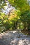 La piedra camina llevando abajo al río en Arashiyama Foto de archivo libre de regalías