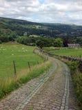 La piedra de la bobina cobbled el carril que corría cuesta abajo en el paisaje de Yorkshire Imagenes de archivo