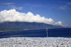 La piedra de la costa Foto de archivo libre de regalías