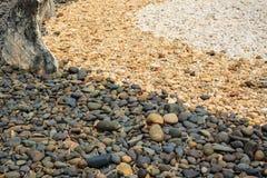 La piedra del color del árbol Fotografía de archivo libre de regalías