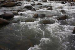 La piedra del río Imagen de archivo libre de regalías