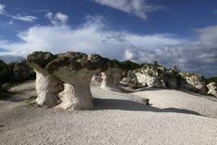 La piedra prolifera rápidamente fenómeno natural fotografía de archivo