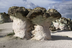 La piedra prolifera rápidamente fenómeno natural fotografía de archivo libre de regalías