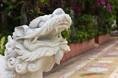 La piedra talla la tortuga del dragón Imagenes de archivo