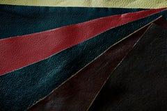 La piel muestrea el fondo colorido Imagenes de archivo