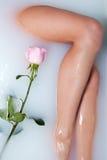 La pierna de la mujer y se levantó Foto de archivo libre de regalías