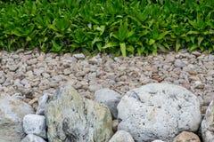 La pierre bascule le gravier et les usines Images stock