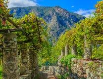 La pietra dei piloni e la calce caratteristiche delle vigne di Th Fotografie Stock