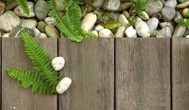 La pietra del ciottolo e della felce sul pavimento di legno struttura lo sfondo naturale Fotografia Stock Libera da Diritti