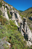 La pietra di fenomeno della natura si espande rapidamente in montagne di Altai vicino al fiume Immagine Stock Libera da Diritti