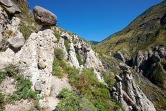 La pietra di fenomeno della natura si espande rapidamente in montagne di Altai vicino al fiume Immagine Stock