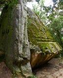 La pietra di sacrificio del ` di Pedra del Sacrifici del ` nella foresta di Savassona, stante alta in mezzo al campo Immagine Stock Libera da Diritti
