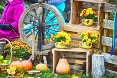 La pieza central rústica de la tabla de la acción de gracias con las manzanas, las calabazas y la maravilla florece imágenes de archivo libres de regalías