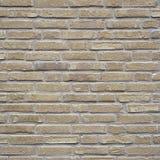 La pieza de la pared de ladrillo amarilla de la nata con el cemento articula Imagenes de archivo