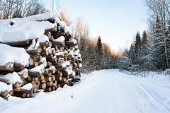 La pila de abre una sesión invierno Fotos de archivo