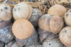 La pila de coco desechado descascara el fondo imágenes de archivo libres de regalías