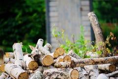La pila de corte de madera del fuego del abedul en verano, la naturaleza y el bosque cuidan concepto Fotografía de archivo libre de regalías