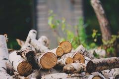 La pila de corte de madera del fuego del abedul en verano, la naturaleza y el bosque cuidan concepto Foto de archivo