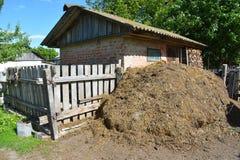 La pila de fertilizante del abono de la vaca y la paja en campo cultivan Abonamiento del abono para cultivar un huerto y el culti fotos de archivo