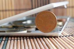 La pila de monedas euro con una denominación de 5 centavos euro en espejo refleja mentiras de la cartera en fondo de bambú de mad Fotos de archivo libres de regalías
