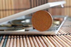 La pila de monedas euro con una denominación de cinco centavos euro en espejo refleja mentiras de la cartera en el fondo de bambú Fotos de archivo