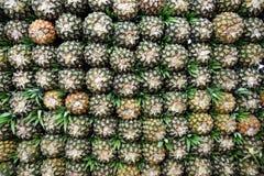 La pila de piñas maduras frescas en los granjeros produce el mercado en Bogotá, Colombia fotos de archivo libres de regalías