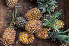 La pila de piñas orgánicas tropicales da fruto en la cesta para la venta en el mercado del granjero del tradtional de la isla de  Fotografía de archivo libre de regalías