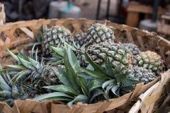 La pila de piñas orgánicas tropicales da fruto en la cesta para la venta en el mercado del granjero del tradtional de la isla de  Fotos de archivo