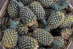 La pila de piñas orgánicas tropicales da fruto en la cesta para la venta en el mercado del granjero del tradtional de la isla de  Foto de archivo