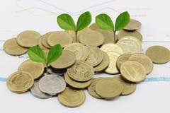 la pila della moneta d'argento di grafico commerciale ed ha cima d'albero nell'affare fotografia stock libera da diritti