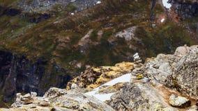 La pila di pietra e la montagna rocciosa completa, Dalsnibba Norvegia Fotografia Stock
