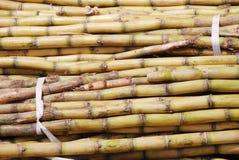 La pile de canne à sucre Image stock