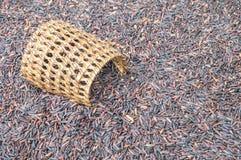 La pile de plan rapproché du riz noir a appelé le riz riceberry avec la vannerie en bois, riz avec de hauts éléments nutritifs su Photos stock