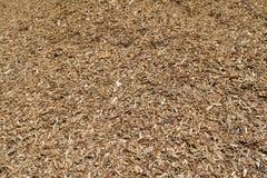La pile des déchets de bois paillent le fond Images libres de droits