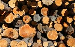 la pile du bois avec de grands rondins a coupé par des enregistreurs dans les montagnes Photos libres de droits