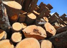 la pile du bois avec de grands rondins a coupé par des enregistreurs dans les montagnes Images libres de droits