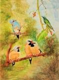 La pintura de cinco pájaros se encaramó en ramas de árbol Foto de archivo