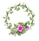 La pintura de la acuarela se va y flor, con el círculo en el fondo blanco Foto de archivo libre de regalías