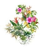 La pintura de la acuarela se va y flor, en el fondo blanco Imagenes de archivo