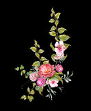 La pintura de la acuarela se va y flor, en fondo oscuro Imágenes de archivo libres de regalías