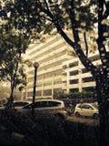 La pioggia fotografia stock