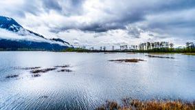 La pioggia scura si rannuvola Pitt-Addington Marsh Nature Reserve vicino a PItt Lake vicino all'acero Ridge, la Columbia Britanni immagini stock