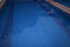 La piscina alla notte Immagini Stock