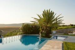 La piscina con la palma Imagenes de archivo